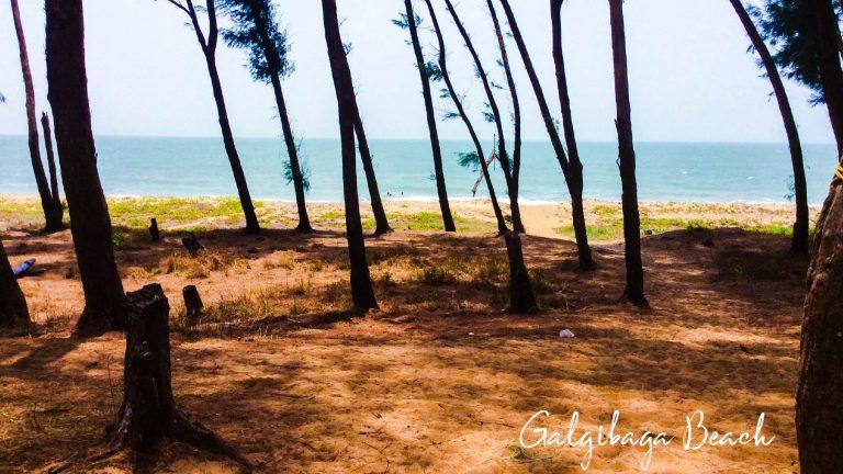 Galgibaga Beach, Goa