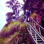 Bhimashankar-Trek-TRAHOT-BLOG-IMAGES-2