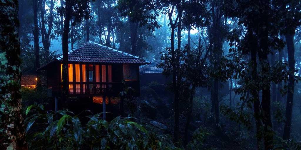 Kerala destinations- Wayanad – Spend a Refreshing Vacation in Wayanad