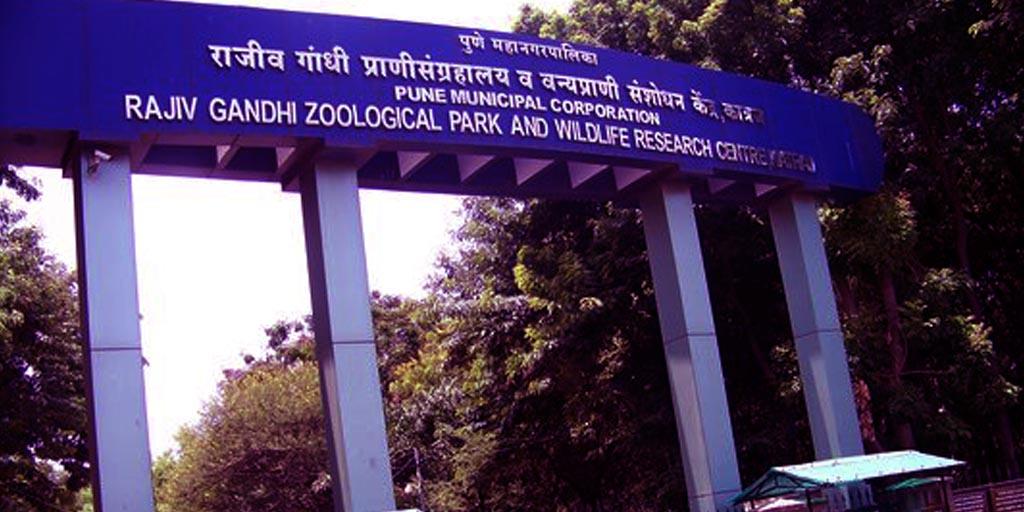 Rajiv Gandhi Zoological Park or Katraj Snake Park